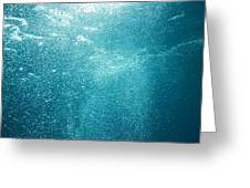 Bubbles Underwater Greeting Card by Stuart Westmorland