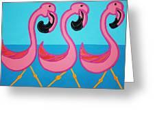 3 Flamingos  Greeting Card by Matthew Brzostoski
