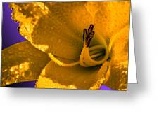 Mellow Yellow Greeting Card by Brian Stevens