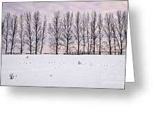 Rural Winter Landscape Greeting Card by Elena Elisseeva