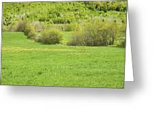 Spring Farm Landscape In Maine Greeting Card by Keith Webber Jr