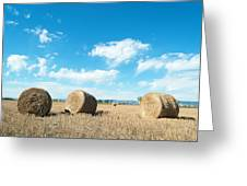 Straw Bales At A Stubbel Field Greeting Card by Svetoslav Radkov