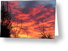Sunset Skys Greeting Card by Joyce Woodhouse