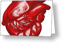 The Human Heart Greeting Card by Dennis Potokar