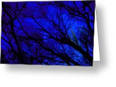 Tree And Sky Greeting Card by Allen n Lehman