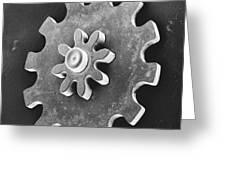 Watch Gear, Sem Greeting Card by David M. Phillips