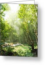 Waterfall In Rainforest Greeting Card by Atiketta Sangasaeng