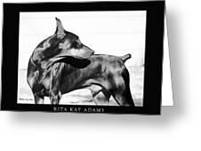 Watchful Greeting Card by Rita Kay Adams