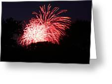 4th Of July Fireworks - 011311 Greeting Card by DC Photographer