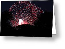 4th Of July Fireworks - 011312 Greeting Card by DC Photographer