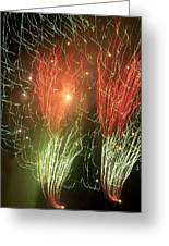 4th Of July Greeting Card by Tammy McDougall