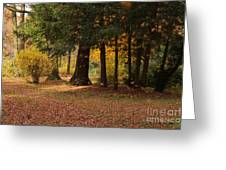 Autumn Greeting Card by Angela Doelling AD DESIGN Photo and PhotoArt