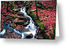 Chesterfield Gorge New Hampshire Greeting Card by Edward Fielding