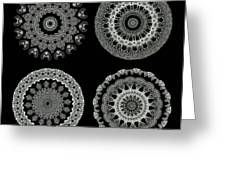 Kaleidoscope Ernst Haeckl Sea Life Series Black And White Set 2  Greeting Card by Amy Cicconi