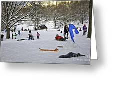 Snowboarding  in Central Park  2011 Greeting Card by Madeline Ellis