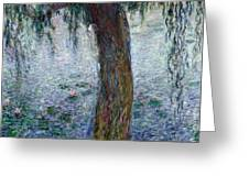 Waterlilies Morning With Weeping Willows Greeting Card by Claude Monet