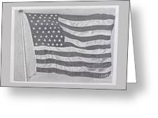 50 Stars 13 Stripes Greeting Card by Wil Golden
