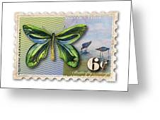 6 Cent Butterfly Stamp Greeting Card by Amy Kirkpatrick