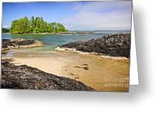 Coast Of Pacific Ocean On Vancouver Island Greeting Card by Elena Elisseeva