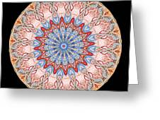 Kaleidoscope Anatomical Illustrations Seriesi Greeting Card by Amy Cicconi
