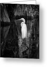 Untitled Greeting Card by Bill Martin