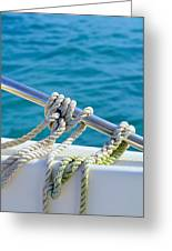 The Ropes Greeting Card by Laura  Fasulo