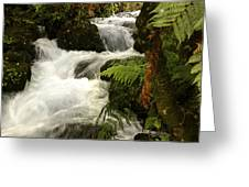 Waterfall  Greeting Card by Les Cunliffe