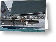 Tp52 Regatta Greeting Card by Steven Lapkin