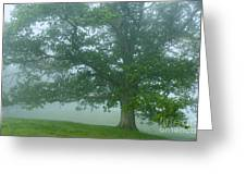 White Oak Tree In Fog Greeting Card by Thomas R Fletcher