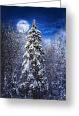 A Cold Night In Northern Maine Greeting Card by Gary Smith