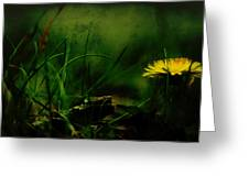A Darkness Befalls The Dandelion Greeting Card by Rebecca Sherman