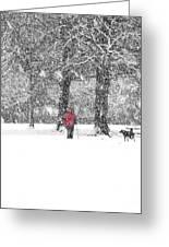 A Dash Of Red Greeting Card by Karin Ubeleis-Jones