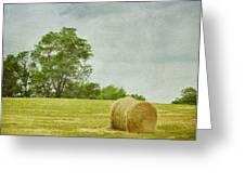 A Day At The Farm Greeting Card by Kim Hojnacki