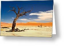 A Desert Story Greeting Card by Juergen Klust