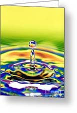 A Drop Of Colour Greeting Card by Tim Gainey