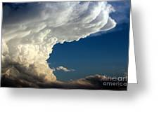 A Face In The Clouds Greeting Card by Barbara Chichester