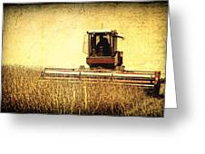 A Field For Harvest Greeting Card by Lincoln Rogers