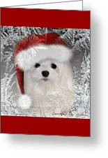 A Frosty Morning Greeting Card by Morag Bates