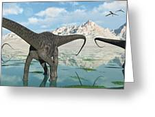 A Group Of Diplodocus Dinosaurs Grazing Greeting Card by Mark Stevenson