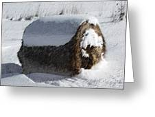 A Hay Bale's Winter Greeting Card by Andrew Govan Dantzler