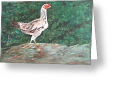 A Hen Greeting Card by Usha Shantharam