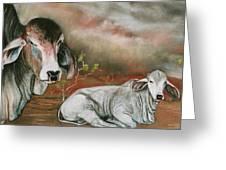 A Lot Of Bull Greeting Card by Sandra Sengstock-Miller
