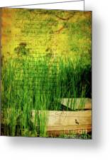 A Love Letter From Summer Greeting Card by Lois Bryan