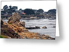 A Misty Day At Pacific Grove Greeting Card by Susan Wiedmann