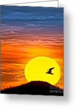 A New Day Greeting Card by Susan Candelario