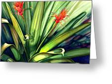 A Peek Through The Leaves Greeting Card by Lyse Anthony
