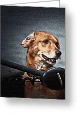 A Portrait Of A Golden Retriever Greeting Card by Deborah Klubertanz