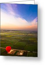 A Red Hot Air Balloon Landing In Egyptian Fields Greeting Card by Mark Tisdale