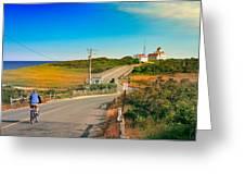 A Road To Coast Guard Beach Eastham Cape Cod Greeting Card by Dapixara Art