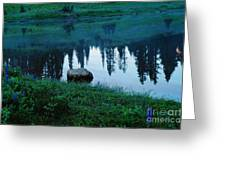 A Rock In The Reflection Greeting Card by Jeff  Swan